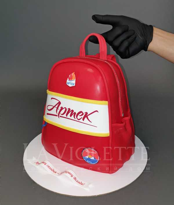 Торт рюкзак №1074