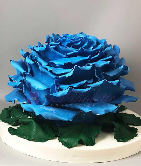 Торт синяя роза №492