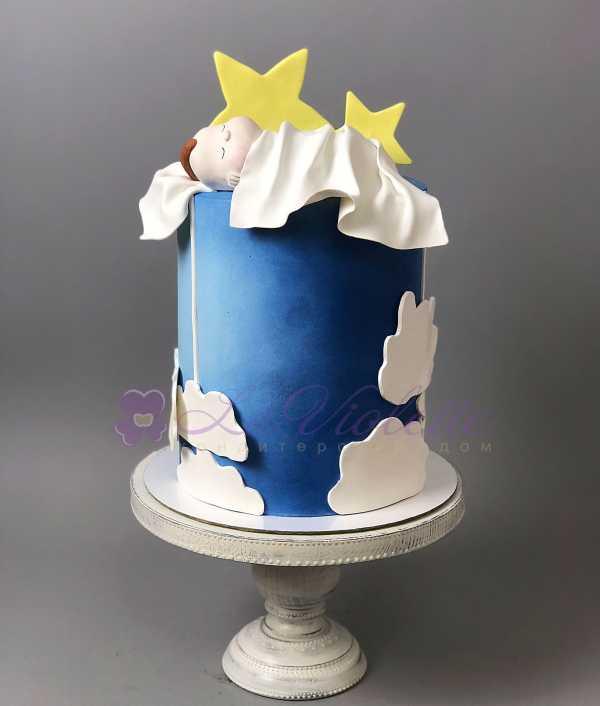 Торт малыш №593