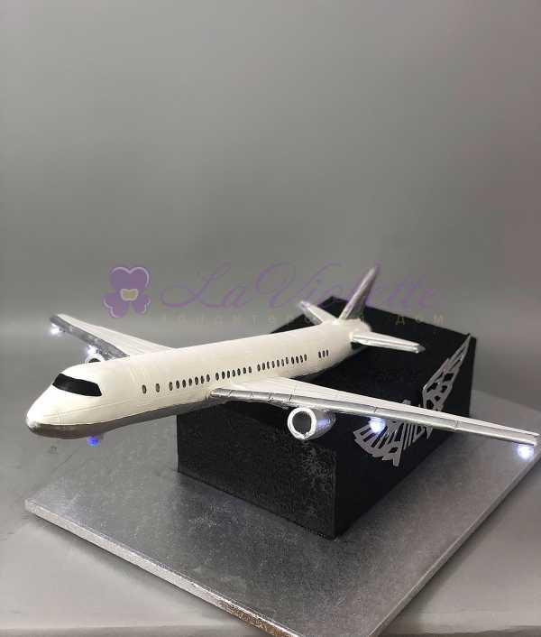 Торт самолет №599